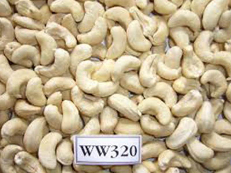Cashew Kernels 1
