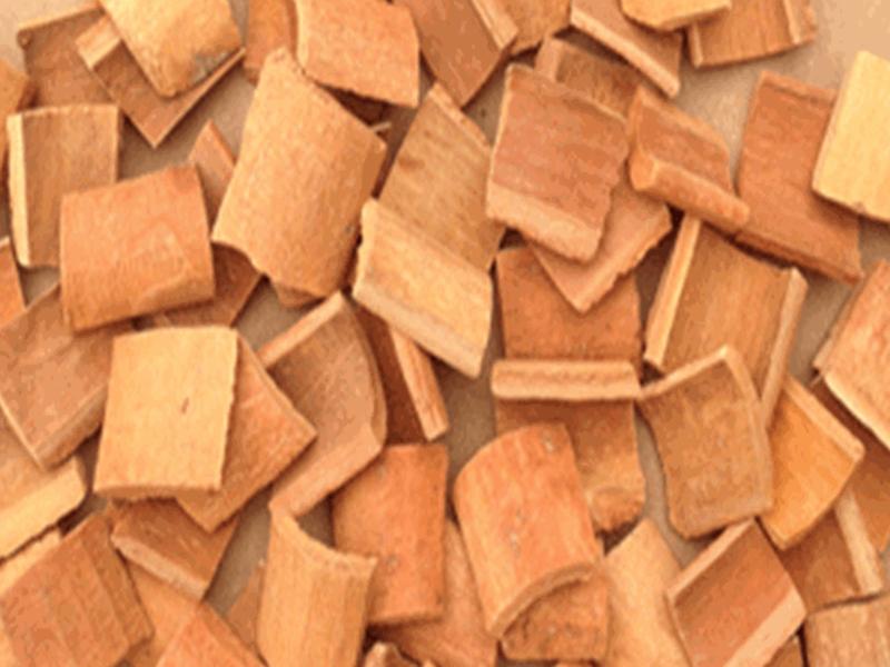 Cassia square cut 1